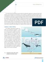 guía didáctica red trófica.pdf