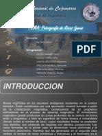 Petrografía de Rocas Igneas