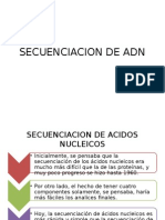 Secuencia4y243y246cion de Adn - Biologia Molecular