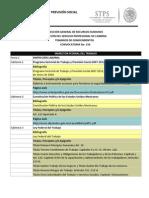 TEMARIOS DE LA CONVOCATORIA No  156.pdf