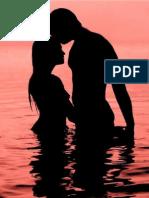 Put-Ljubavi dosadan roman.pdf