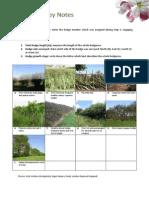 Biodiversity Protocol Survey Notes