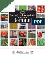Buenas Practicas Cadena Tomate