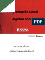 110105553-Programacion-Lineal.pdf