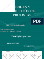 ORIGEN Y EVOLUCIÓN DE PROTISTAS