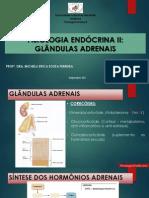 Aula VI-Fisiologia Endócrina II