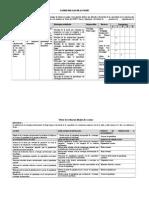 Matriz Del Plan de Acciones y Evaluaciones