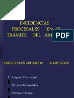 Incidencias Procesales en El Trámite Del Amparo