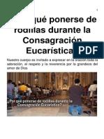 eBook-Por Qué Ponerse de Rodillas Durante La Consagración Eucarística