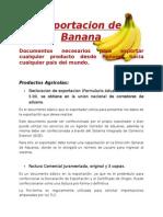 Exportacion de Banana