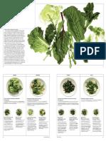 Salad Greens, 12 Ways, from Mark Bittman's Kitchen Matrix