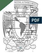 Aderezo Con Piña y Chile en Suspensión Gruesa