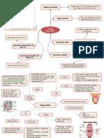 mind map sistem pencernaan makanan