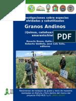 Libro Tesis Bolivia y Peru (19.10.2010) Tamano 21.6 x 16.5cms-1