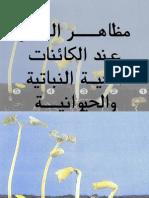 02 مظاهر النمو عند الكائنات الحية النباتية والحيوانة.pps