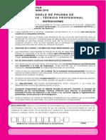 Ensayo PSU 2015 - Ciencias Técnico Profesional