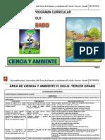Programa.curricular.RDA(Diversificación.curricular).3er.grado_CyA_I.E.N°4016