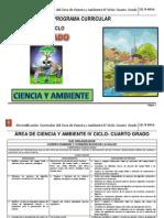 Programa.curricular.RDA(Diversificación.curricular).4to.grado_CyA_I.E.N°4016