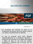 microbiologadecarnes-101031230605-phpapp01