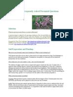 Herbaceous Perennial FAQs