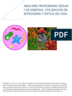 Tipos de Metabolismo Microbiano.