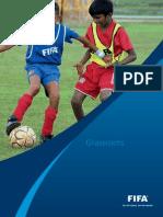 Documento Fifa