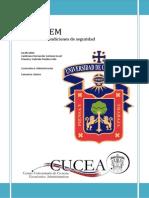 ADYCHEM Auditoría PDF