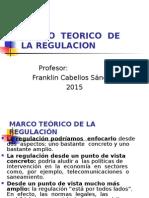 Marco Teorico de La Regulacion