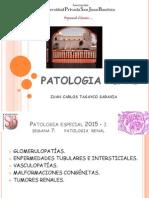 Nefrologia Patologia