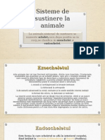 Sisteme de Sustinere La Animale