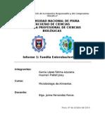 Informe1 M.a.
