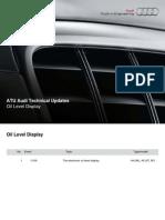 2010 05 Oil Level Display A4 A5.pdf