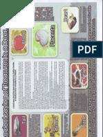File0008.PDF