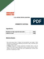 FERMENTO NATURAL.doc