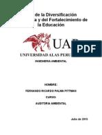 Auditoría Ambiental de Verificación Del Rio Torococha de La Municipalidad Provincial de San Román