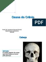 Ossos Crânio EEFE 2013
