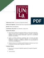 -Programa Problemas Especiales de Seguridad 2013.doc