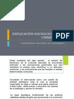 Explicación Sociologia de La Criminalidad