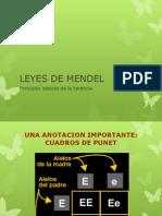 leyesdemendel-120527224554-phpapp01.pptx