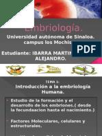 Embriología introduccion