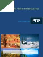 02 Ciclos Biogeoquimicos