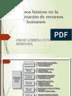 Procesos Basicos ARH Angie Cuta