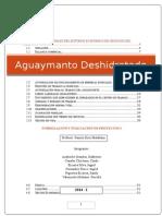 Formulacion y Evaluacion de proyectos Aguaymanto Deshidratado