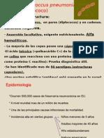 T 3.1 Respiratorio (1)
