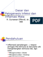 Patogenesis Inflamasi Mata