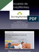 02-SurveyMonkey