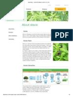 About Stevia|MORITA KAGAKU KOGYO CO