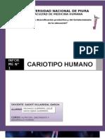 Informe de Genética n1 UNP-4 CICLO