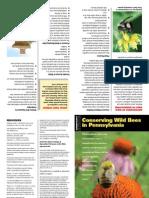 document pollinator  biodiversity