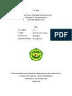 Cover artikel c21.doc